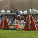 Dublin Horse Show at RDS