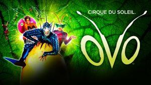 cirque du soleil dublin