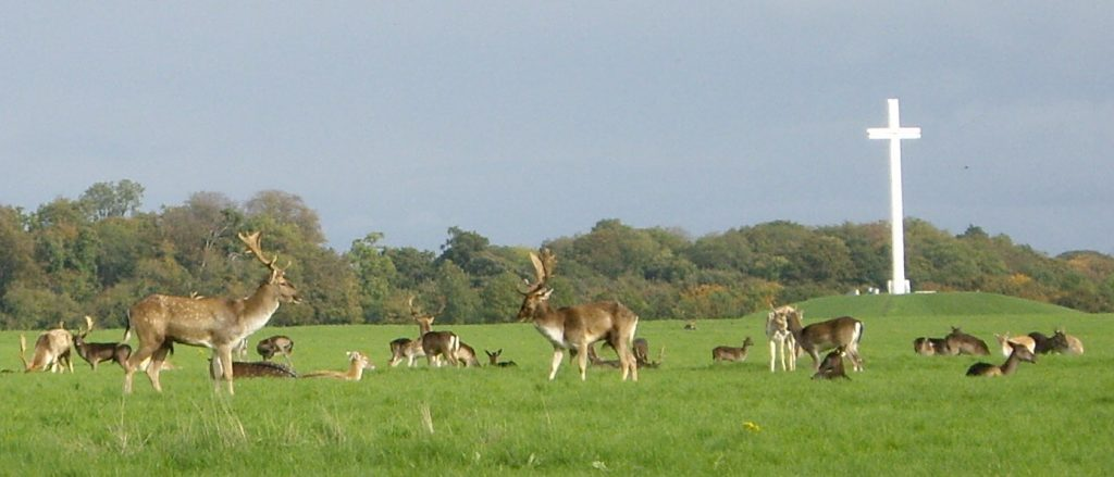 phoenix park - free things to do in Dublin